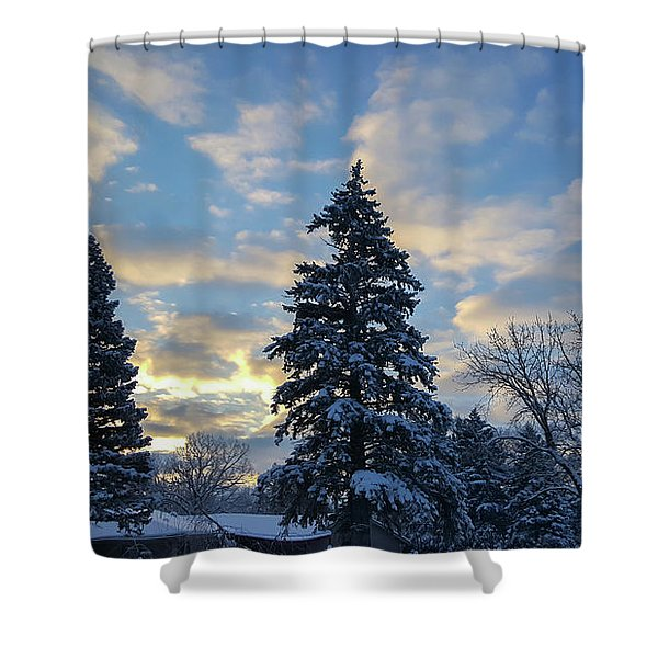Winter Dawn Over Spruce Trees Shower Curtain