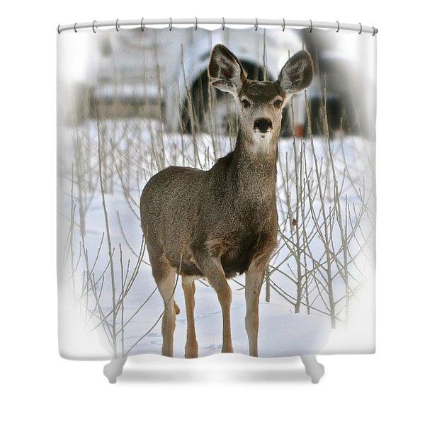 Winter Deer On The Tree Farm Shower Curtain