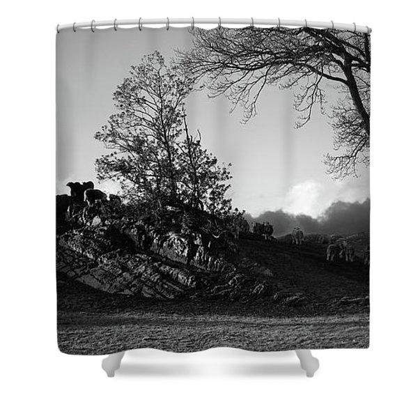 Winter Evening,hawkshead Moor,uk Shower Curtain