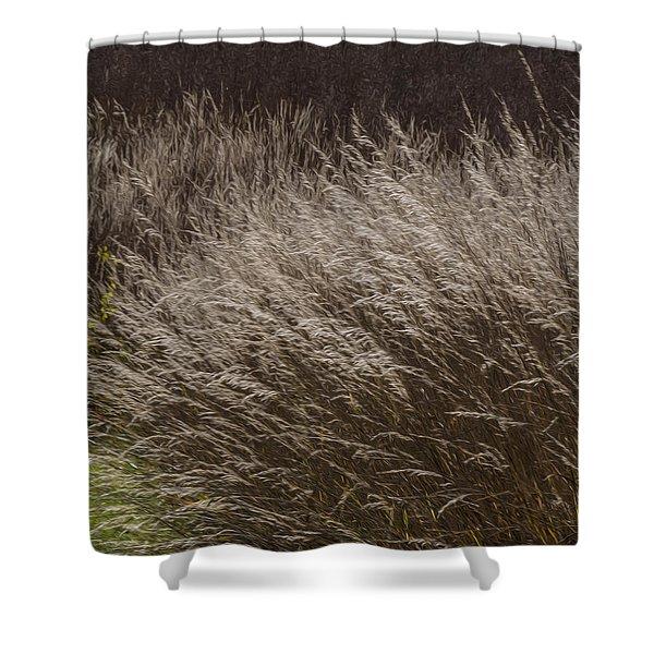 Winter Grass Shower Curtain