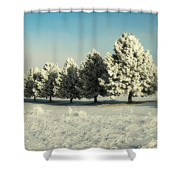 Winter In Montana Shower Curtain