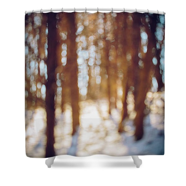Winter In Snow Shower Curtain
