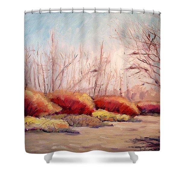 Winter Landscape Dry Creek Bed Shower Curtain