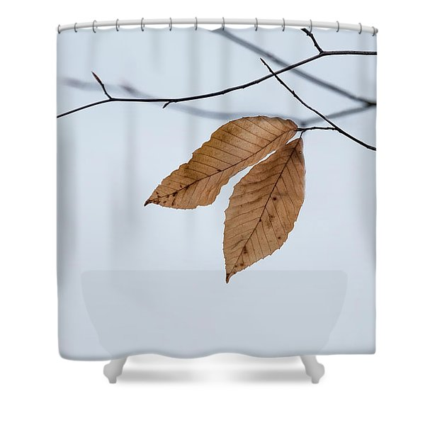 Shower Curtain featuring the photograph Winter Leaves by Tom Singleton
