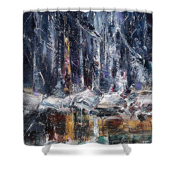 Winter Light Iv Shower Curtain