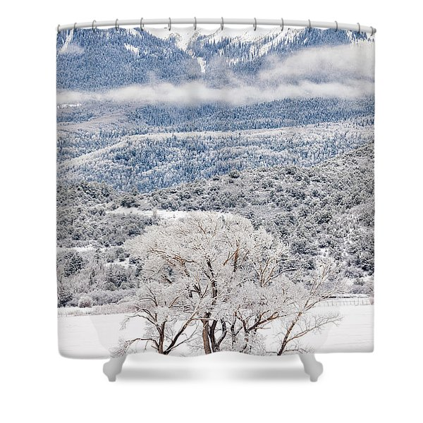 Winter Magic Shower Curtain