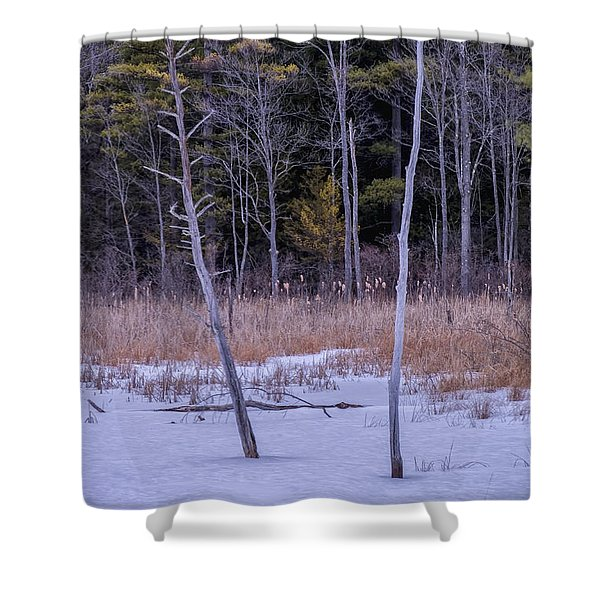 Shower Curtain featuring the photograph Winter Marsh And Trees by Tom Singleton