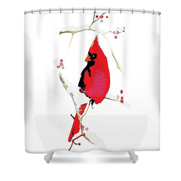 Winter Messenger Shower Curtain