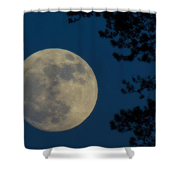 Shower Curtain featuring the photograph Winter Moon by Randy Hall