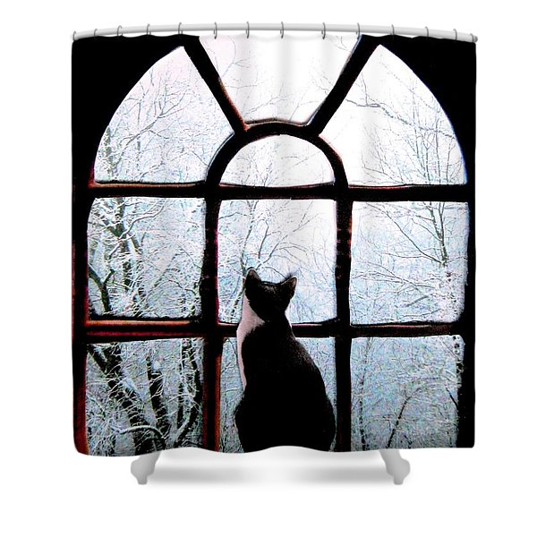 Winter Musing Shower Curtain