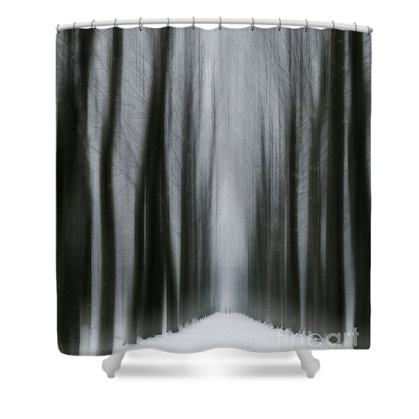 Winter Mystery Shower Curtain