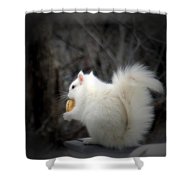 Winter Nibbles Shower Curtain