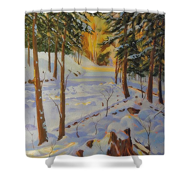 Winter On The Lane Shower Curtain