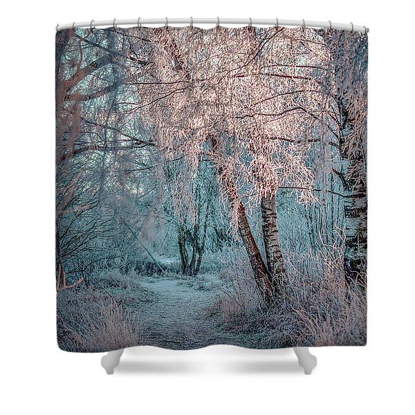 Winter Path #h1 Shower Curtain