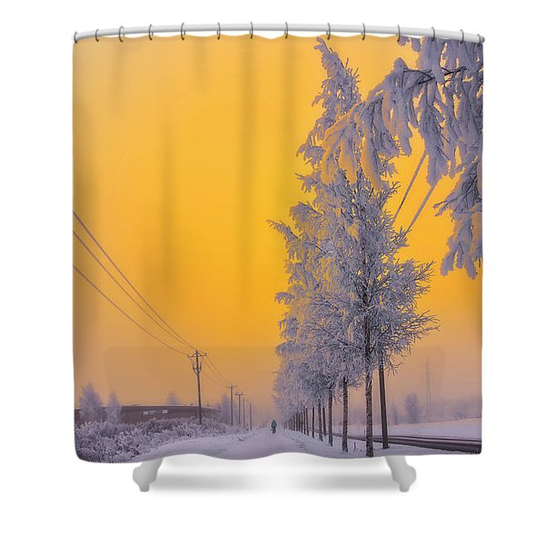 Winter Road 2 Shower Curtain