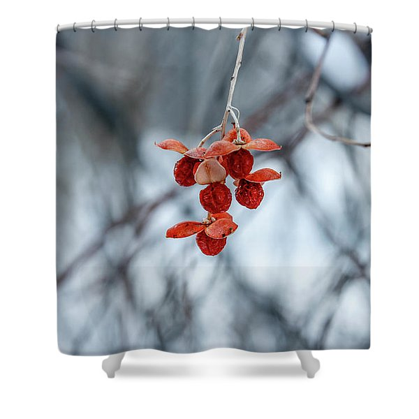 Winter Seeds Shower Curtain