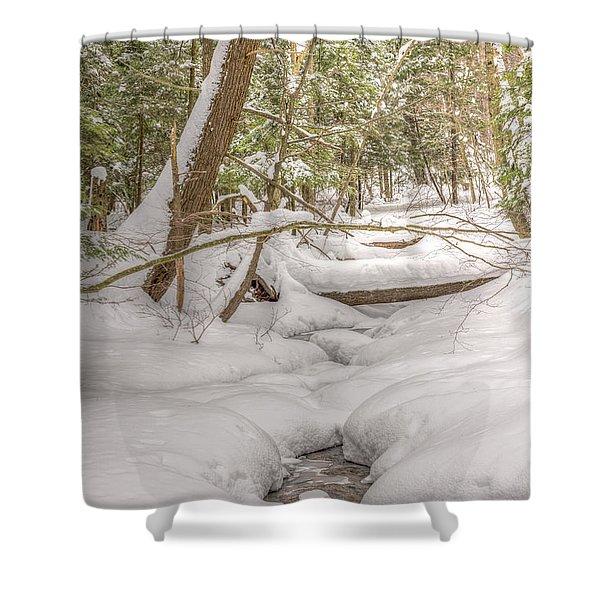 Winter Serenity Shower Curtain