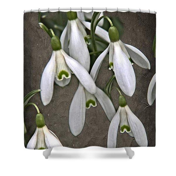 Winter Snowdrop Canvas Shower Curtain