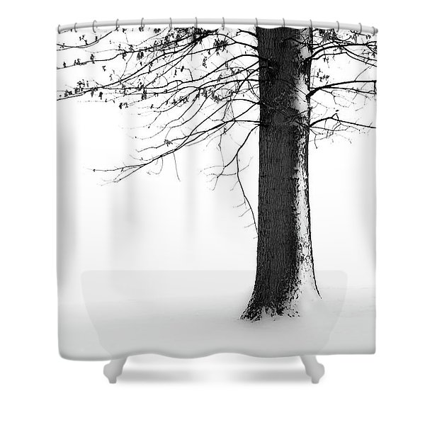 Winter Solitude Shower Curtain