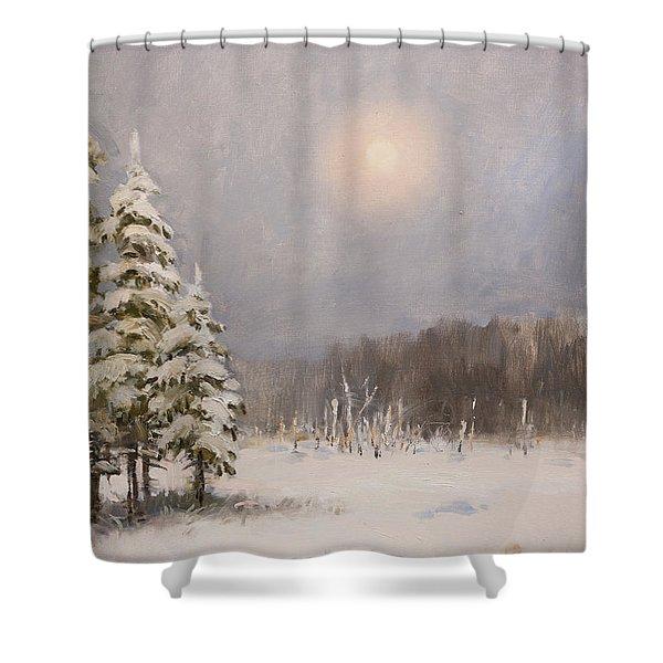 Winter Stillness Shower Curtain
