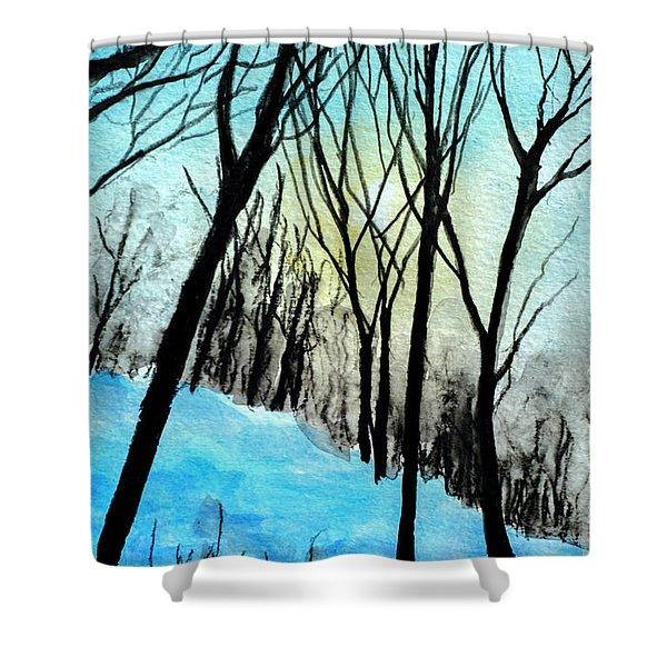 Winter Sunlight Shower Curtain