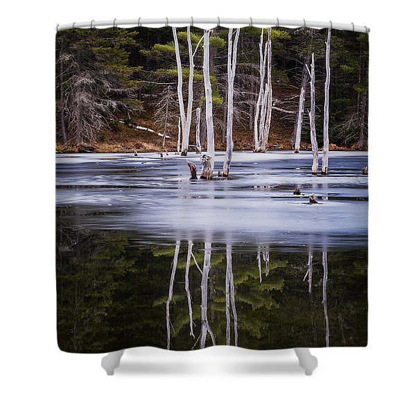 Shower Curtain featuring the photograph Winter Thaw Relections by Tom Singleton