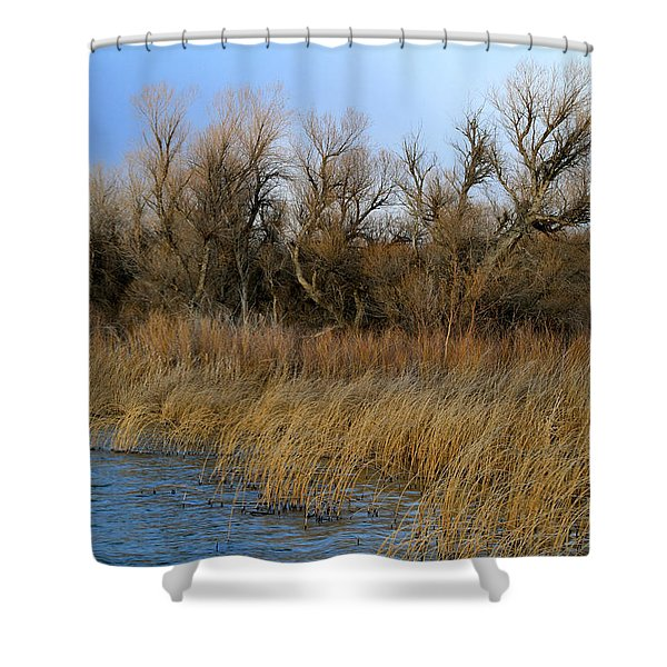 Winter Trees Along The Snake Shower Curtain