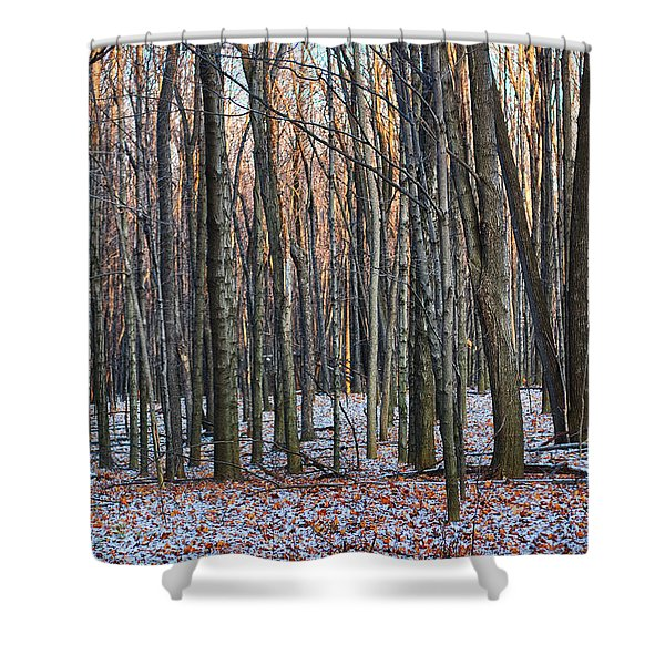 Winter - Uw Arboretum Madison Wisconsin Shower Curtain