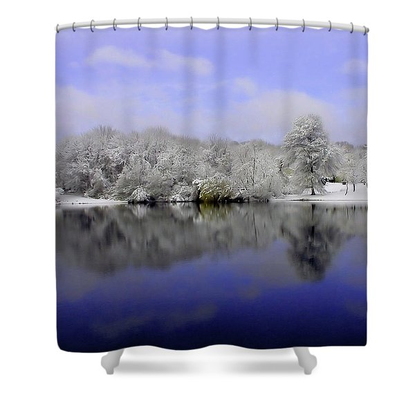 Winter View Shower Curtain by Karol  Livote