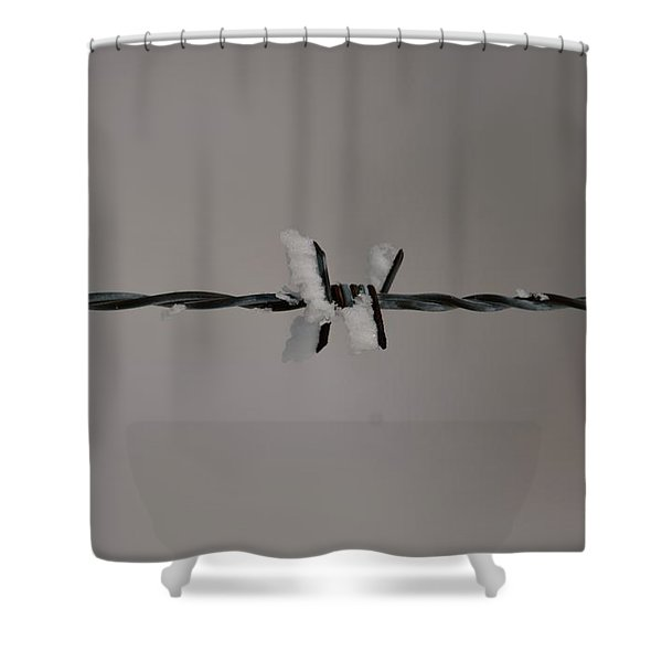 Winter Wire Shower Curtain