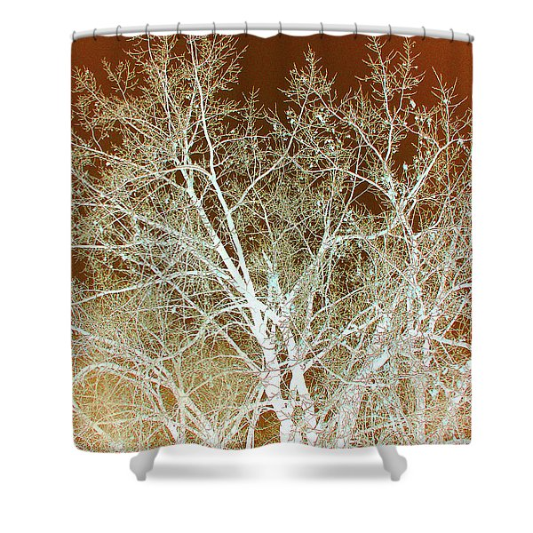 Shower Curtain featuring the photograph Winter's Dance by Cris Fulton
