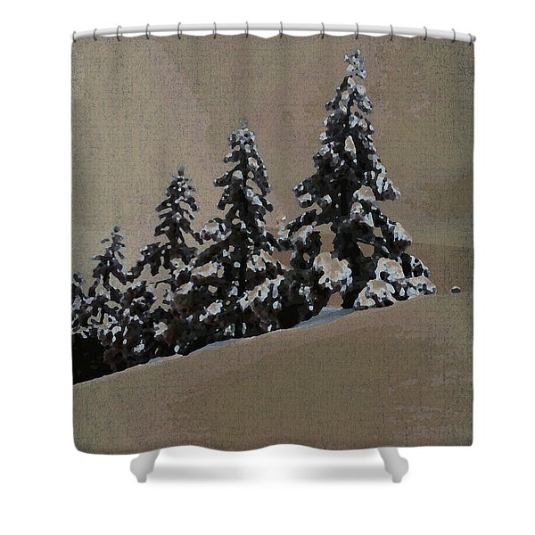 Winters Eve Shower Curtain