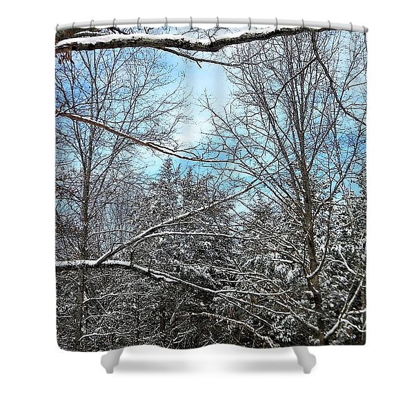 Winter's First Snow Shower Curtain