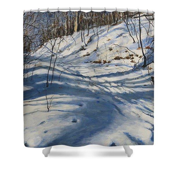 Winter's Shadows Shower Curtain