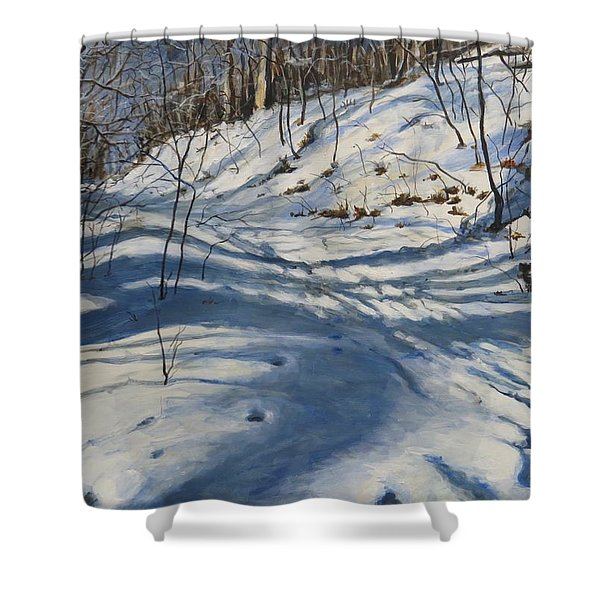 Winter's Shadows Shower Curtain