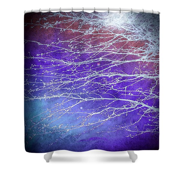 Winter's Twilight Shower Curtain