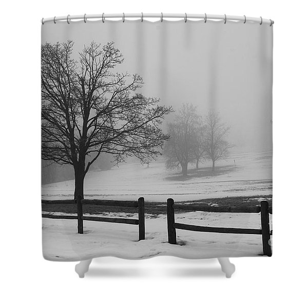 Wintry Morning Shower Curtain