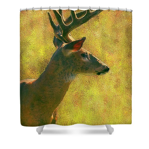 Wisconsin White Tail Buck Shower Curtain