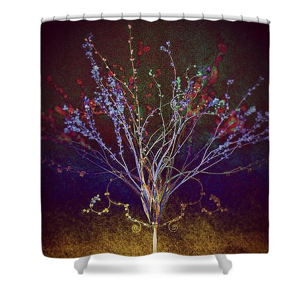 Wisdom Does Not Show Itself Shower Curtain
