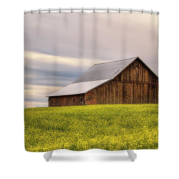 Withdrawn Shower Curtain