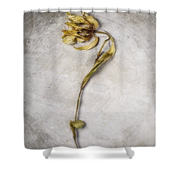 Withered Shower Curtain