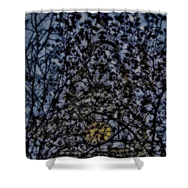 Wm Penn's Woods Shower Curtain