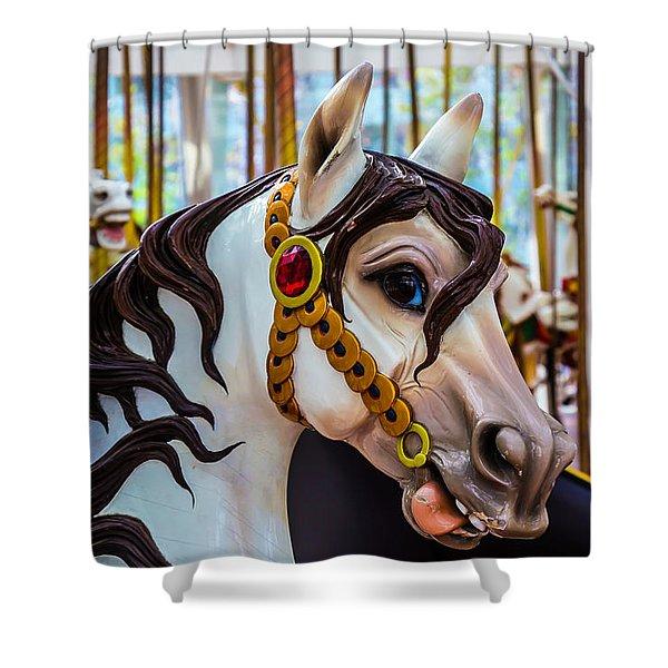 Wonderful Carrousel Horse Portrait  Shower Curtain