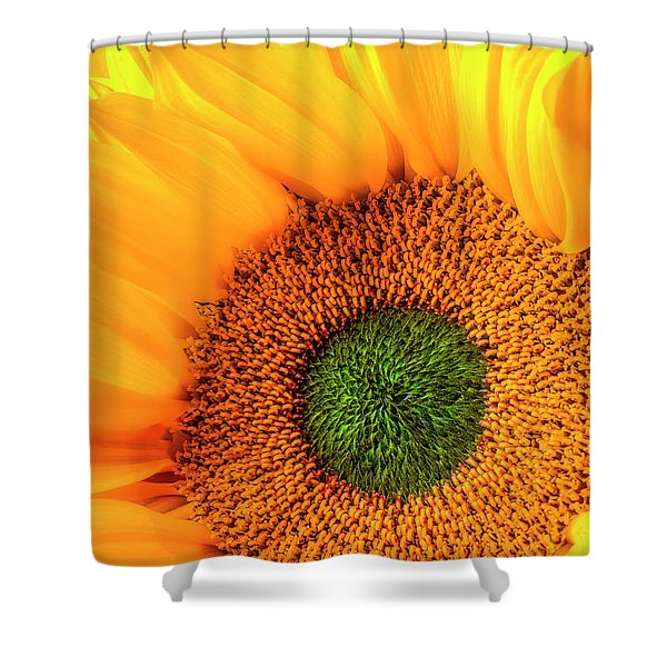 Wonderful Sunflower Close Up Shower Curtain