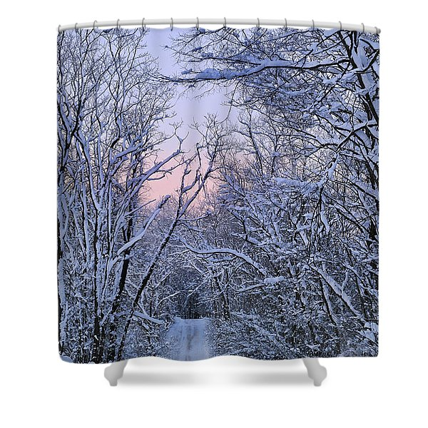 Wonderland Road Shower Curtain