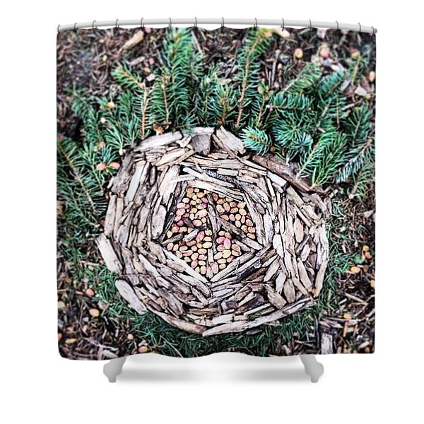 Wood And Green Needles Shower Curtain