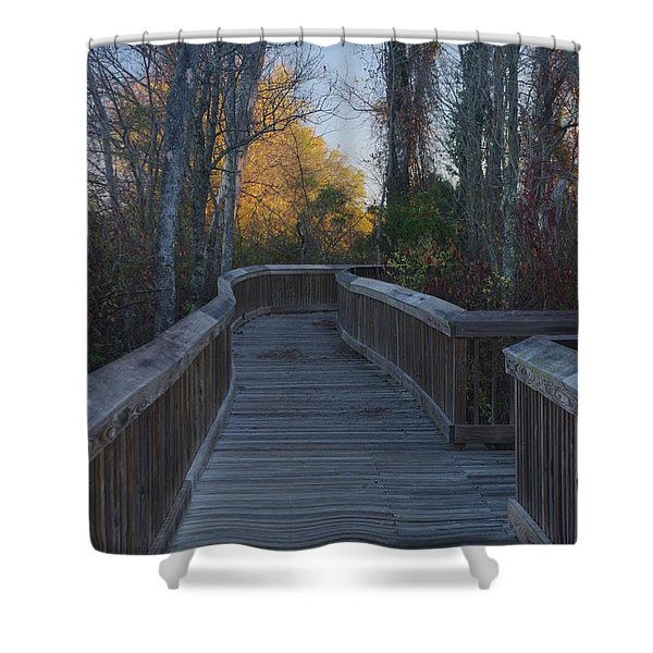 Wooden Path Shower Curtain