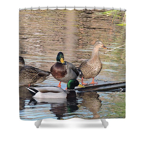 Woodies At Neary Shower Curtain