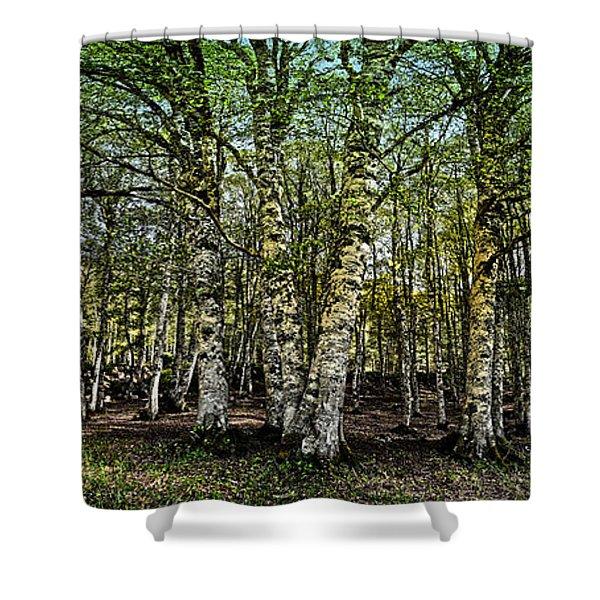 Woodland Shower Curtain