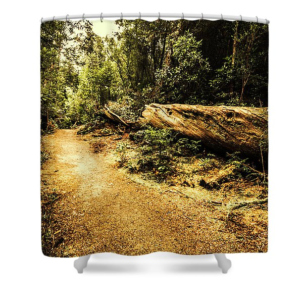 Woodland Nature Walk Shower Curtain